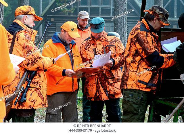 Autumnal driven hunt on red deer, hunt, hunting, driven hunt, red deer hunt, hunt on the red deer, hunting with dogs, November hunt, hunt of Bavarian forests