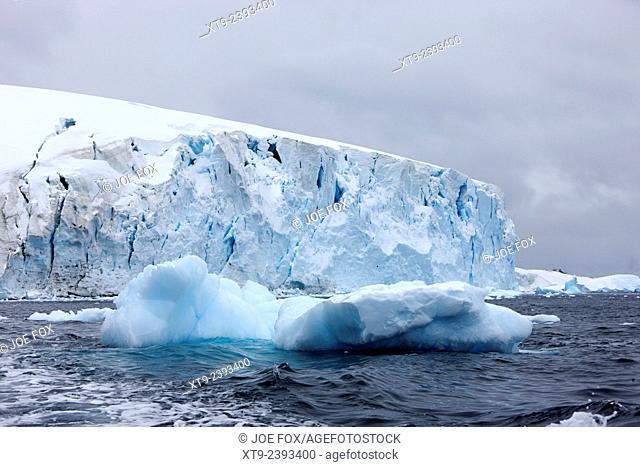icebergs and glacier on cuverville island Antarctica