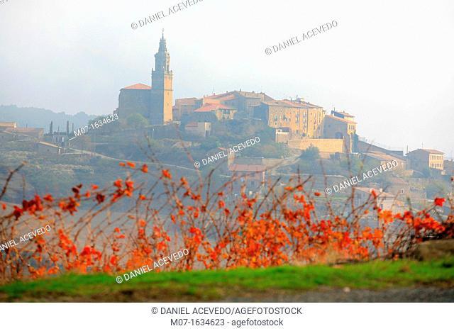 Labraza village and vines in autumn, Rioja Alavesa, Spain