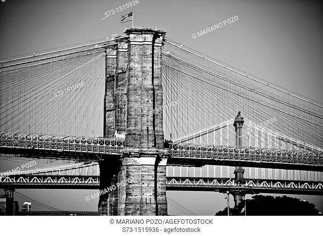 Brooklyn Bridge and Manhattan Bridge in background, New York City, USA