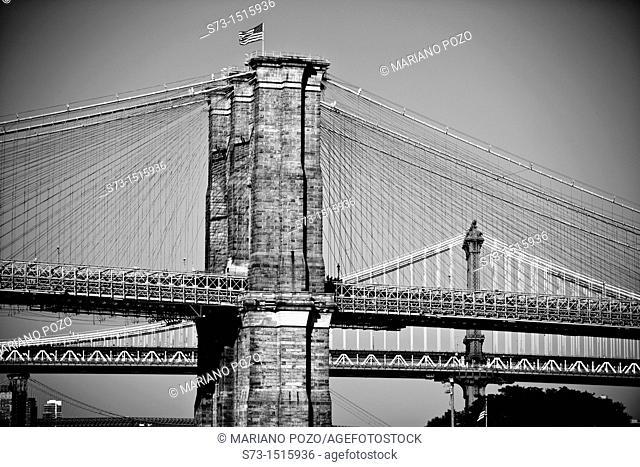 Brooklyn Bridge and Manhattan Bridge in background, New York City, USA