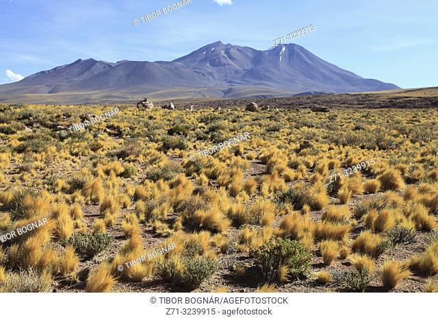 Chile, Antofagasta Region, Atacama Desert, Andes Mountains,