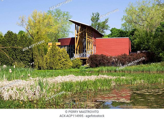 Pond with Chlorophyta - Green Algae, Typha latifolia - Common Cattails and Maison de l'arbre Frédéric-Back Pavilion in spring, Montreal Botanical Garden, Quebec