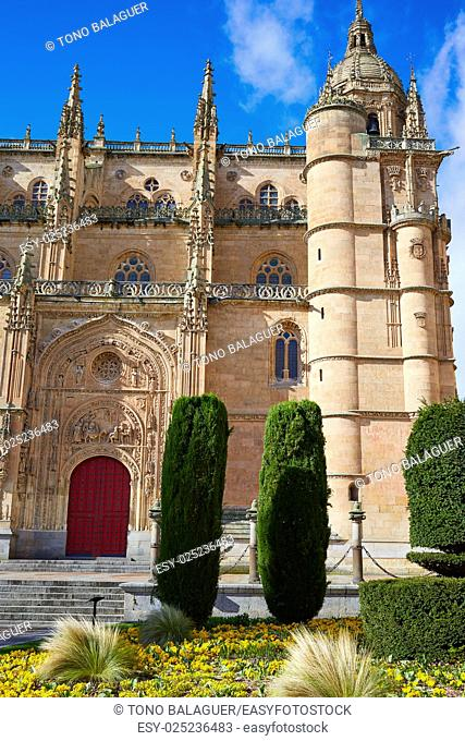 Salamanca Cathedral facade in Spain by the Via de la Plata way to Santiago