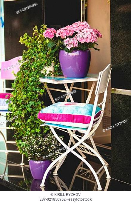 metal chair, garden table and plants in pots