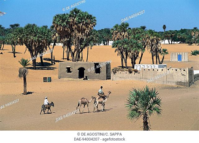 Village between Dongola and Old Dongola, Nubia, Sudan