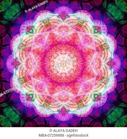 Photographic flower mandala, pink, purple, green
