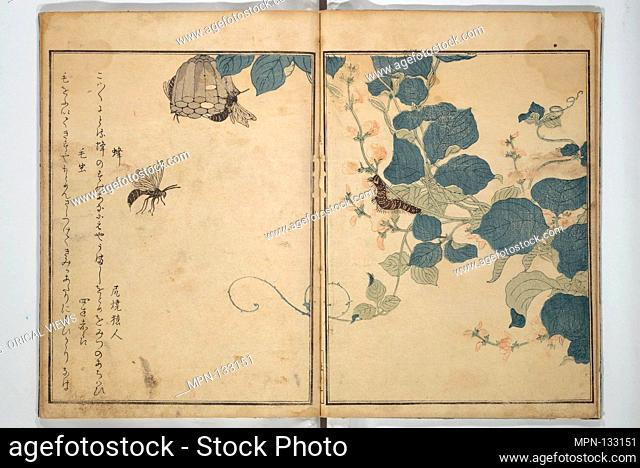 Picture Book of Selected Insects (The Insect Book) (Ehon mushi erami). Artist: Kitagawa Utamaro (Japanese, 1753?-1806); Period: Edo period (1615-1868); Date:...