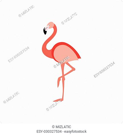 Beautiful pink flamingo standing on one leg vector illustration isolated on white background