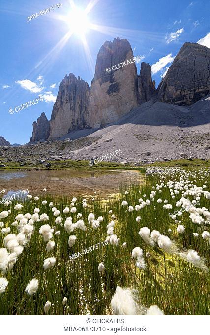 Drei Zinnen from Grava Longa Lakes, Dolomites, Toblach, Bozen, South Tyrol, Italy