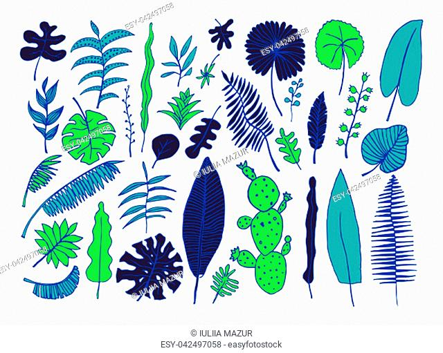 Vector set of bright tropical plants. Hand-drawn Leaves, Inflorescences, Flowers. Blue Black Green colors