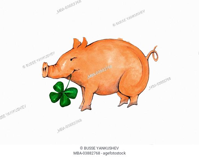 Lucky-pig, cut-out, illustration