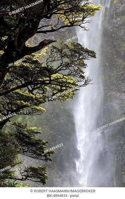 Devil's Punchbowl Waterfall, Arthur's Pass National Park, Canterburry Region, South Island, New Zealand