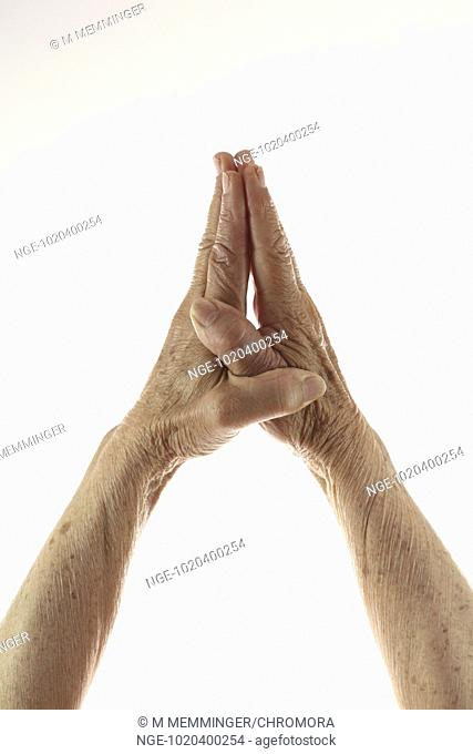 Praying Hands of an old woman in front of white background