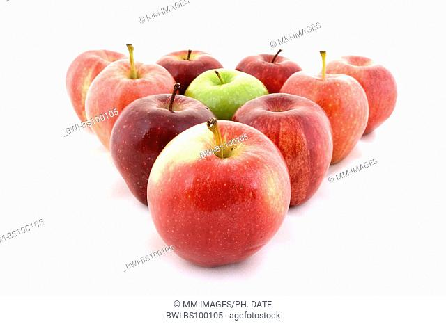 apple (Malus domestica), a green apple in a triangle of red