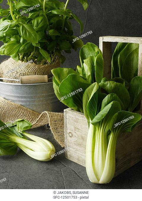 Bok choy and basil