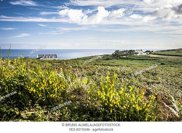 Landscape in Sizun Cape near Lescoff ( Plogoff, department of Finistère, region of Bretagne, France)
