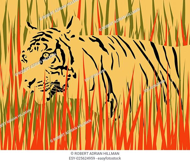 Vector illustration of a tiger in dry grass with tiger and grass as separate elements