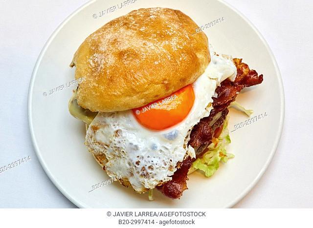 Burger, Restaurante Bar Virginia Mendibil Menus & Fast Good, Irun, Gipuzkoa, Basque Country, Spain
