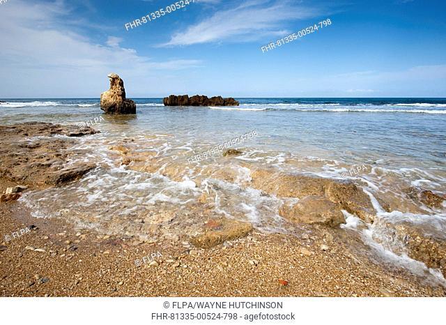 View of rocky coastline, Les Rotes Beach, Denia, Marina Alta, Costa Blanca, Alicante Province, Valencia, Spain, May