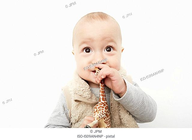Portrait of cute baby boy playing with toy giraffe