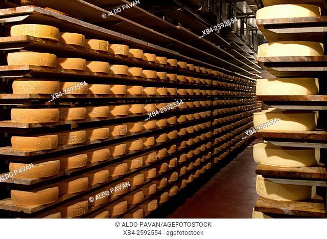 Dairy 'Caseificio Sociale Comprensoriale di Primiero', Mezzano, Italy