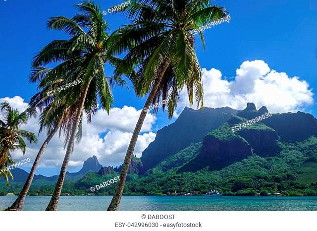 Cook's Bay and lagoon in Moorea Island. French Polynesia