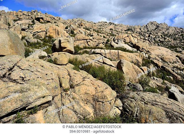 Rocky landscape in La Pedriza, Madrid, Spain