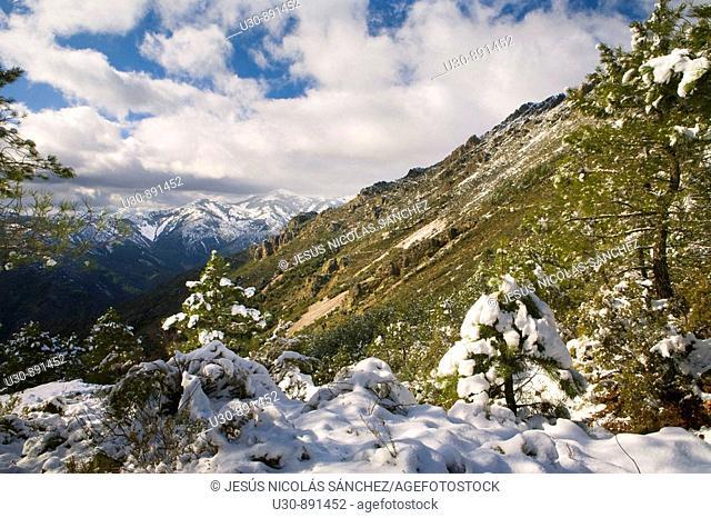 Las Batuecas-Sierra de Francia Natural Park, Biosphere Reserve  Salamanca  Castilla y Leon  Spain