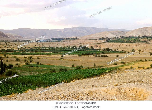 View of the surrounding farmlands and foliage outside the city of Jericho, Israel, November, 1967