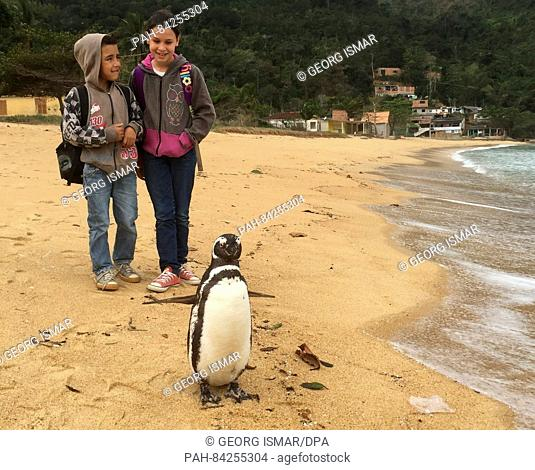 Penguin Dindim stands on the beach of the village of Proveta, watched by pupils Alessandra (10) and Bryon (6), on the Atlantic island of Ilha Grande, Brazil