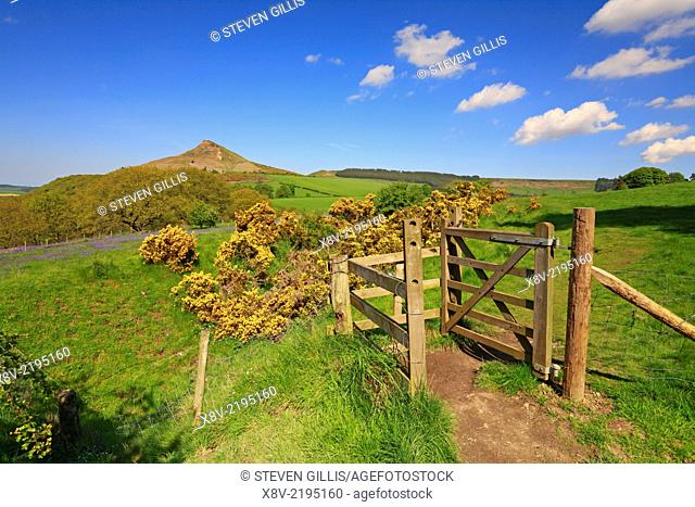 Gate and path towards Roseberry Topping, North Yorkshire, North York Moors National Park, England, UK