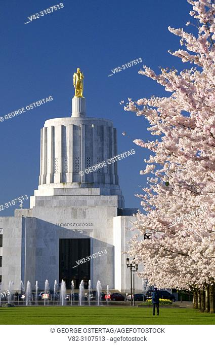 Oregon State Capitol with cherry blossoms, State Capitol State Park, Salem, Oregon