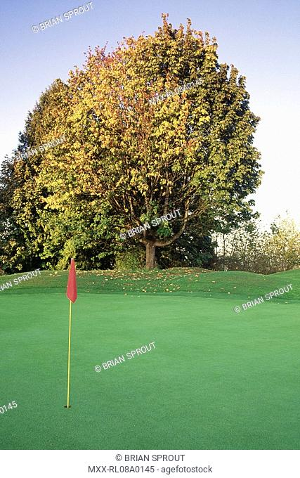 golf green, with red flag