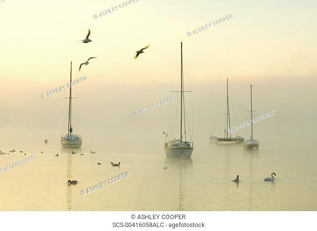 A misty morning over Lake Windermere Lake District UK