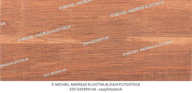 Wood background - Wood from the tropical rainforest - Suriname - Coupia glabra Aubl