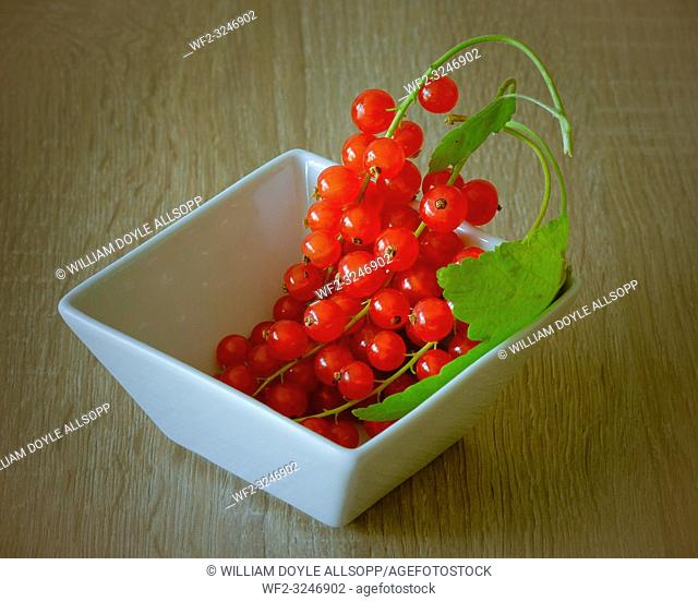 A Bowl of freshly picked redcurrants