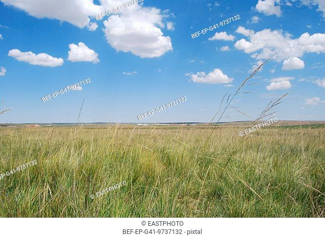 The scenery of the landscape types: sheila MuRen grassland of Inner Mongolia
