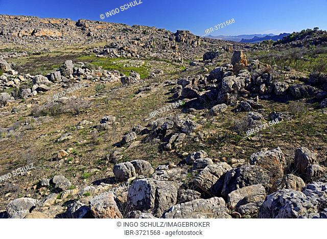 Landscape of the Cederberg Wilderness Area, Cederberg Wilderness Area, near Clanwilliam, Western Cape, South Africa