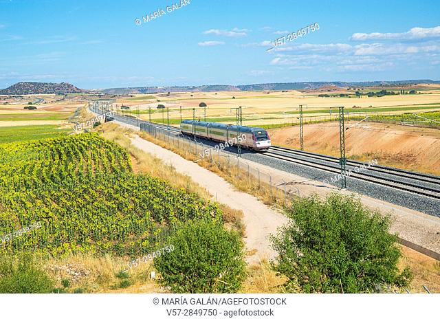 Train traveling along La Mancha. Cuenca province, Castilla La Mancha, Spain