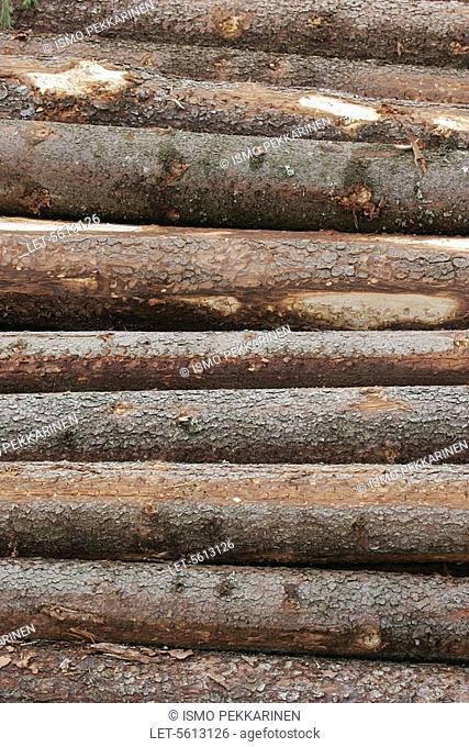 Logs  Outokumpu, Finland