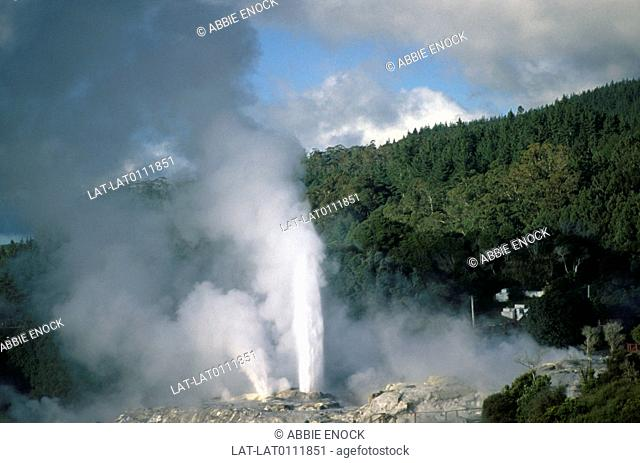 Whakarewarewa is a geothermal area within Rotorua city in Taupo Volcanic Zone of New Zealand,attributable to the continual volcanic activity under the earth's...