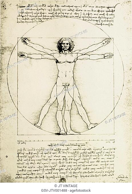 Vitruvian Man, Study of Proportions, Leonardo Da Vinci, Drawing, Circa 1490