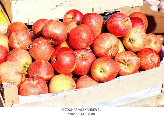 Apples for sale at the local farmers market