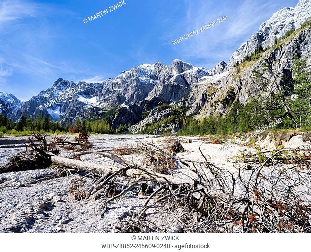 The Wimbachgries in the heart of the NP Berchtesgaden between Mt. Watzmann and Mt. Hochkalter. View over uprooted trees towards Hochkalter