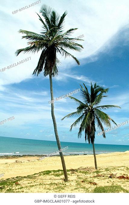 Perobas beach, Touros, Rio Gande do Norte, Brazil