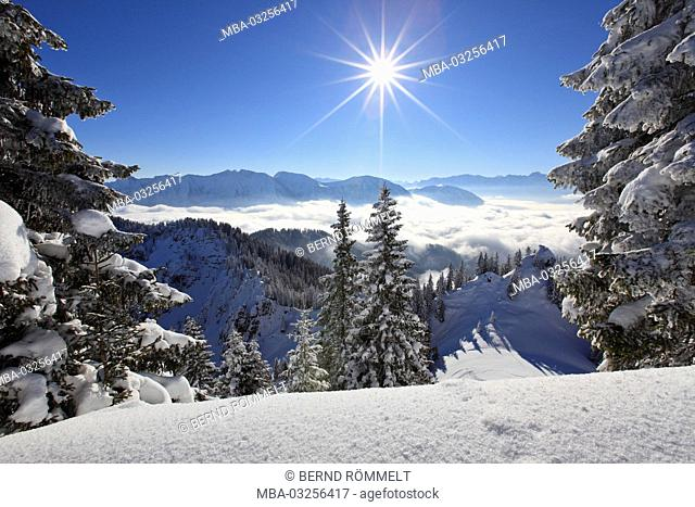 Germany, Bavaria, Upper Bavaria, Ammergauer alps, Laber, Estergebirge, Werdenfelser Land (region)