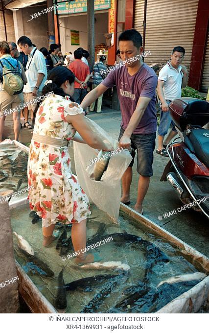 Fish, Market Rongjiang, Rongjiang, Guizhou, China