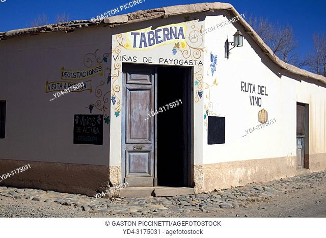 Payogasta, wine route, National Route 40, Calchaqui Valleys, Salta, North West, Argentina. . The National Route 40, also known as RN40 or Ruta 40