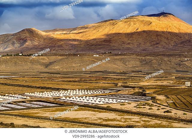 Saltworks. Salinas de Janubio. Lanzarote Island. Canary Islands Spain. Europe